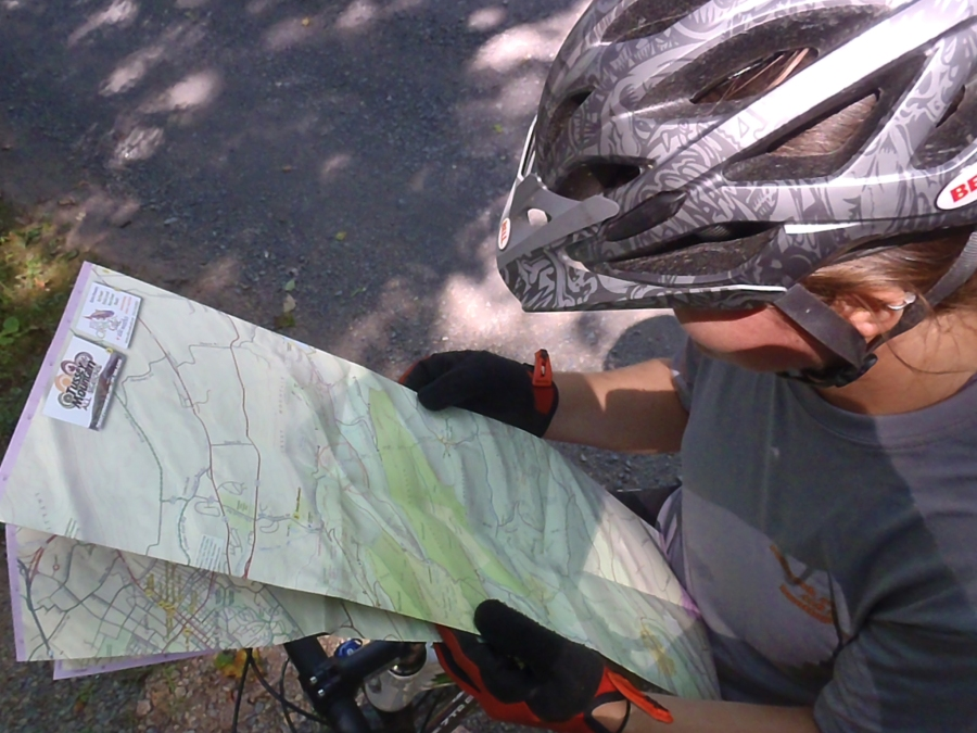 Purple Lizard Map consultation.