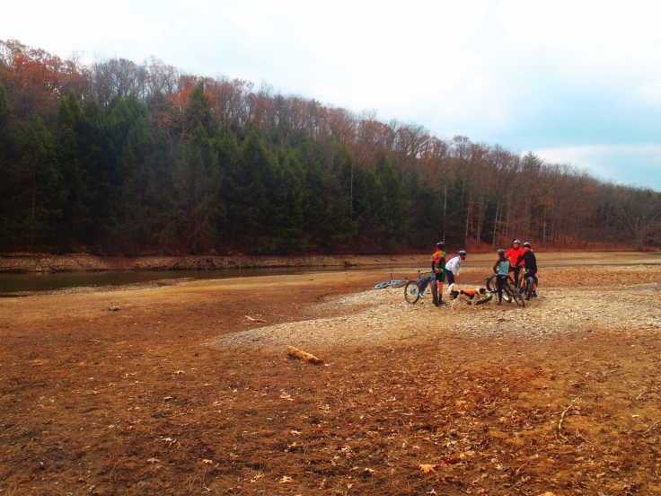 Gathering on the only non-muddy spot.