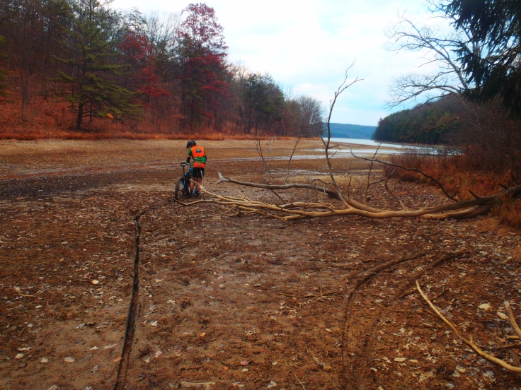 Muddy tracks.