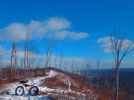 Tussey Mountain Trail.