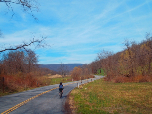 Cruising along Hartslog Valley Road.