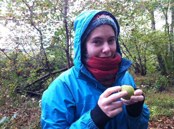 It's also walnut season!
