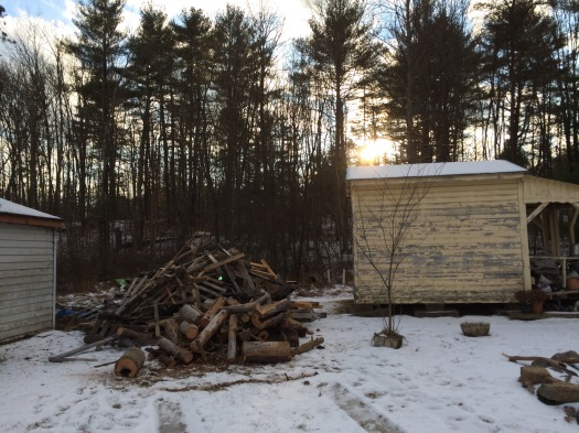 That's a serious wood pile.