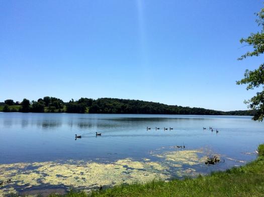 Binder Lake.