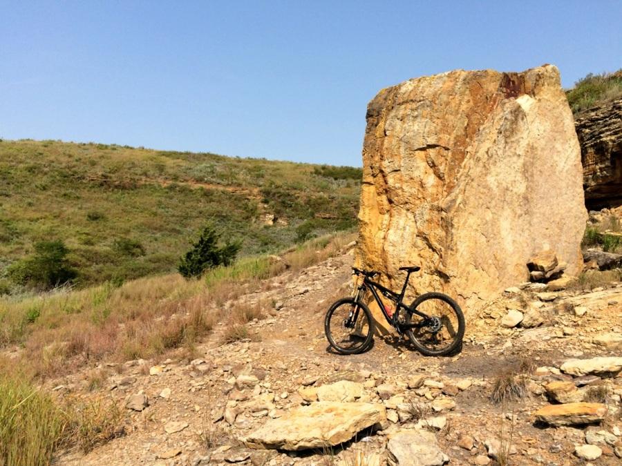 switchgrass rocks