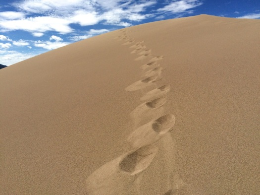 footprints up the dunes