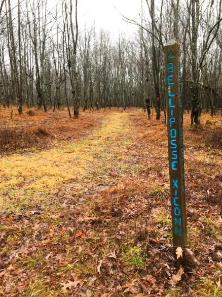 quehanna_hiking